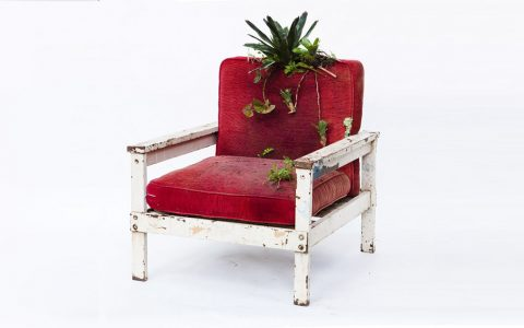 chair Meet Rodrigo Bueno's Botanical Chair Untitled 1 2 480x300