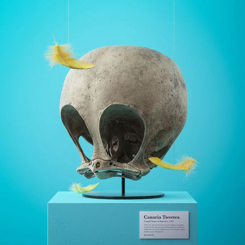 Filip Hodas Imagines Cartoon Characters' Skulls On His Modern Art modern art Filip Hodas Imagines Cartoon Characters' Skulls On His Modern Art Filip Hodas Imagines Cartoon Characters Skulls On His Art 6