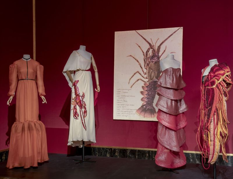 A Zoo Of Peculiarities: Animalia Fashion Exhibition at Palazzo Pitti fashion exhibition A Zoo Of Peculiarities: Animalia Fashion Exhibition at Palazzo Pitti A Zoo Of Peculiarities Animalia Fashion Exhibition at Palazzo Pitti 13