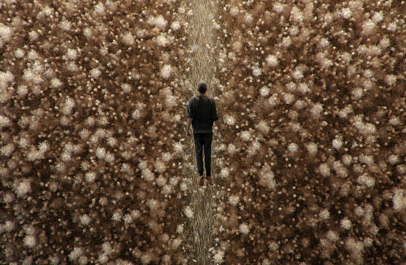 """""""French Exit"""", Tadao Cern Ponders Human Nature By A Field Of Dry Grass tadao cern """"French Exit"""", Tadao Cern Ponders Human Nature By A Field Of Dry Grass Tadao Cern French Exit Digital Art Yellowtrace 05 1"""